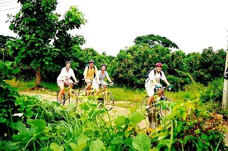 Fahrradtour by Siamsun Chiangmai