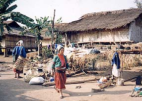 Chiang Dao Discovery by Siam Sun Chiangmai